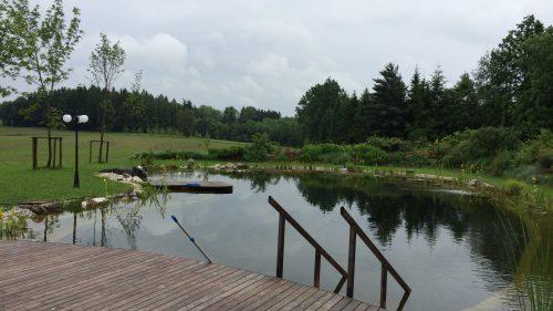 Schwimmteich mit zwei Holzstegen