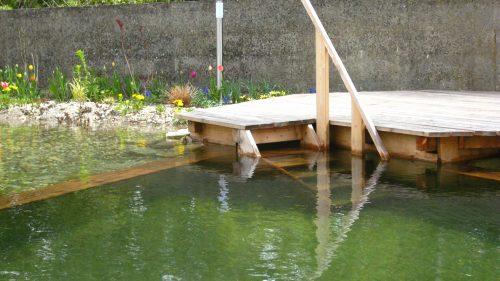 kleiner Schwimmteich