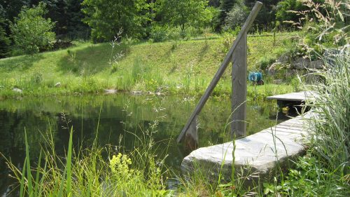 ein Sprungstein führt ins Wasser
