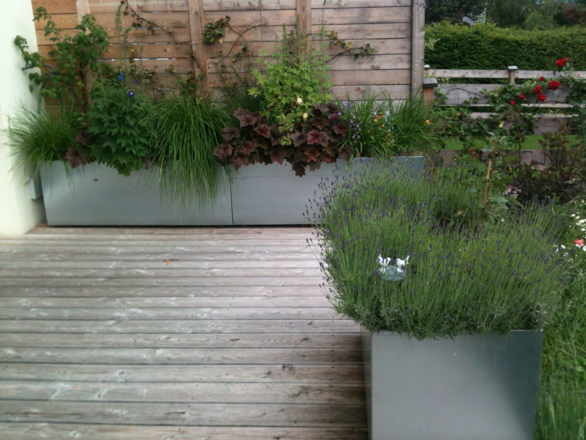Dachgartengestaltung