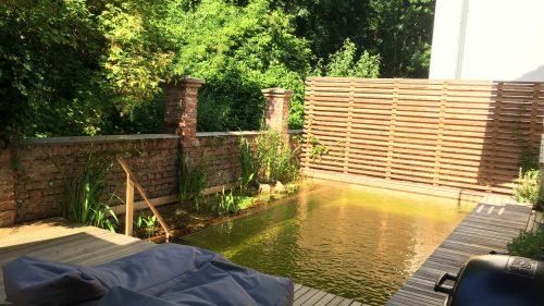 Schwimmteich eingebettet von Lärchenholz