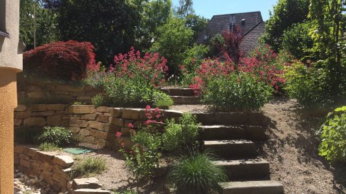Kelleraufgang Steinstufen und Spornblume