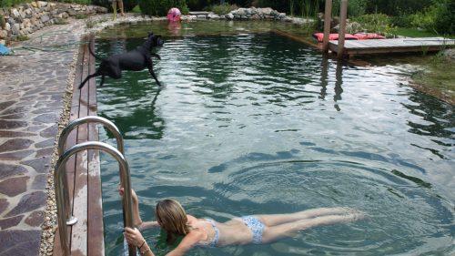 Auch die Hunde dürfen baden!