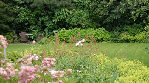 der Blick in den Garten