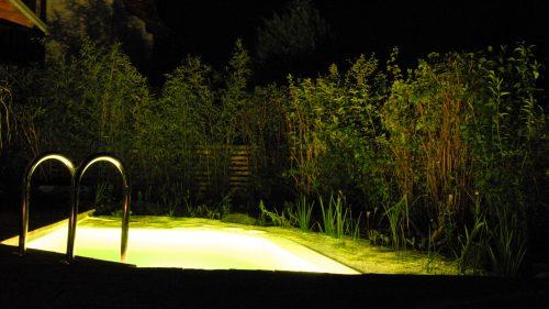 Schwimmteichbeleuchtung in der Nacht