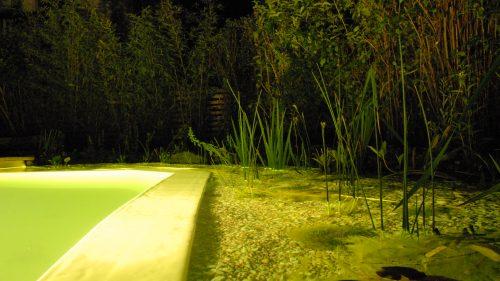 Wasserbeleuchtung in der Nacht
