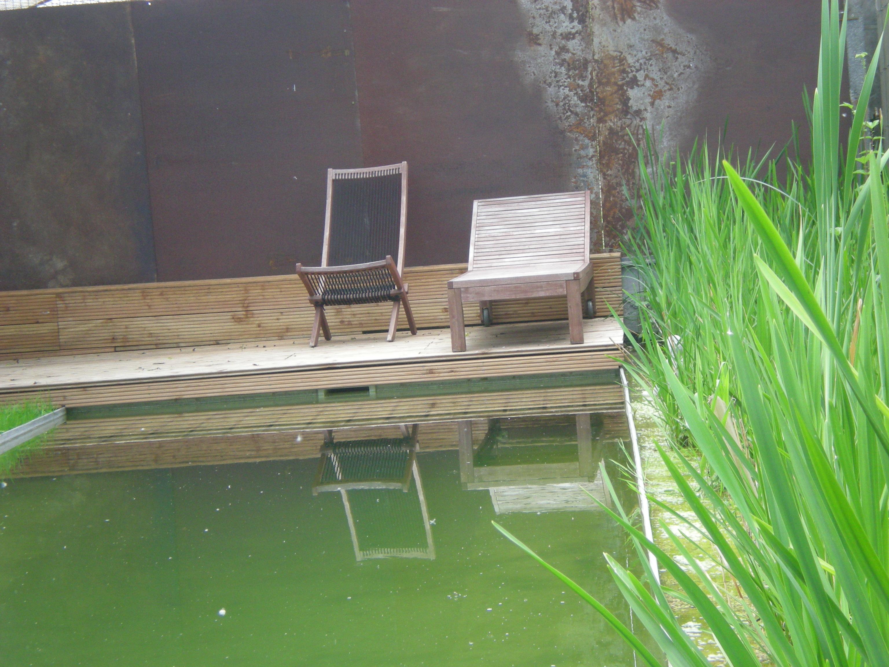 Schwimmteich im Regen