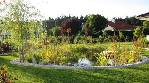 Gartenteich im frühen Herbst