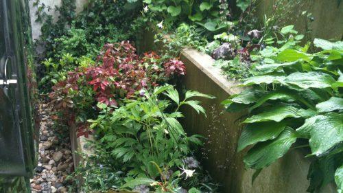 Sichtbetonmauern abgestuft und artenreich bepflanzt