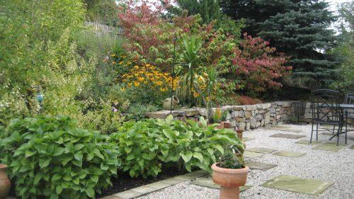 ein Kiesgarten mit Hortensien