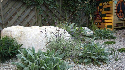 Findling mit Lammohr und Lavendel