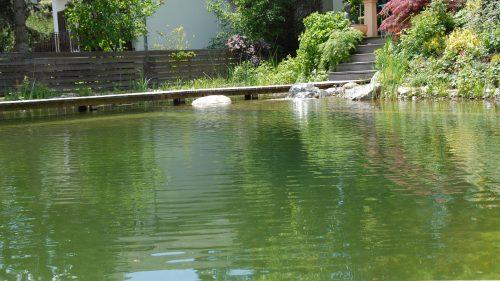 ruhige Wasserfläche des Schwimbereiches