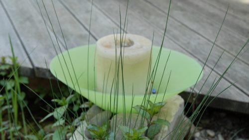 eine Kerze am Teichrand