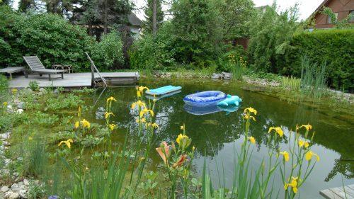 Schwimmteich in Erdwallbauweise