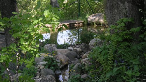 Schwimmteich mit Bachlauf im Grünen