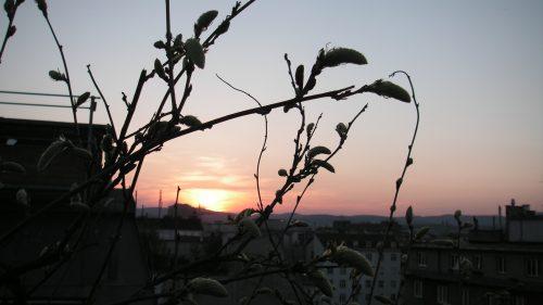 Sonnenuntergang am Dach