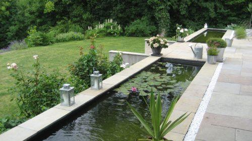 Wasserbecken mit Seerosen
